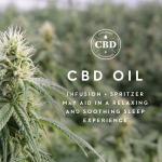 Zoned ActiveDough™ + CBD Oil, King