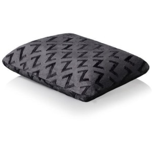 Travel Zoned Dough Pillow