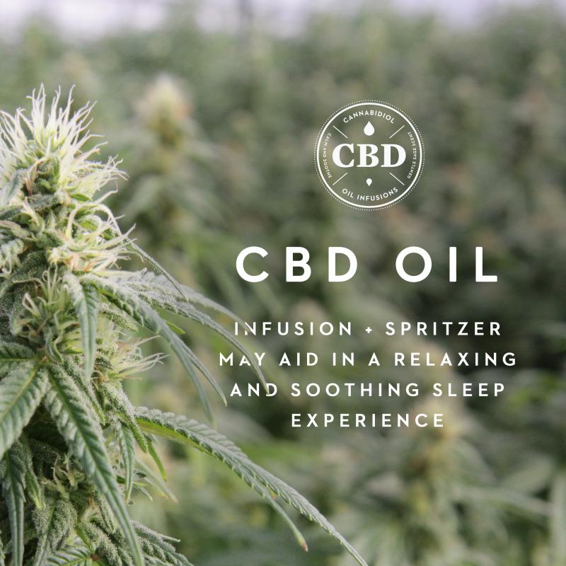 Shoulder Zoned Dough™ + CBD Oil, Queen