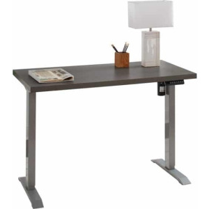 Electric Sit/Stand Desk - Gray