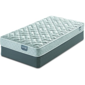 "Nayden Firm Mattress & 9"" Foundation"