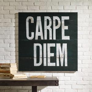 Carpe Diem Printed Canvas with Gel Coat