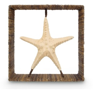 Starfish Shadow Box
