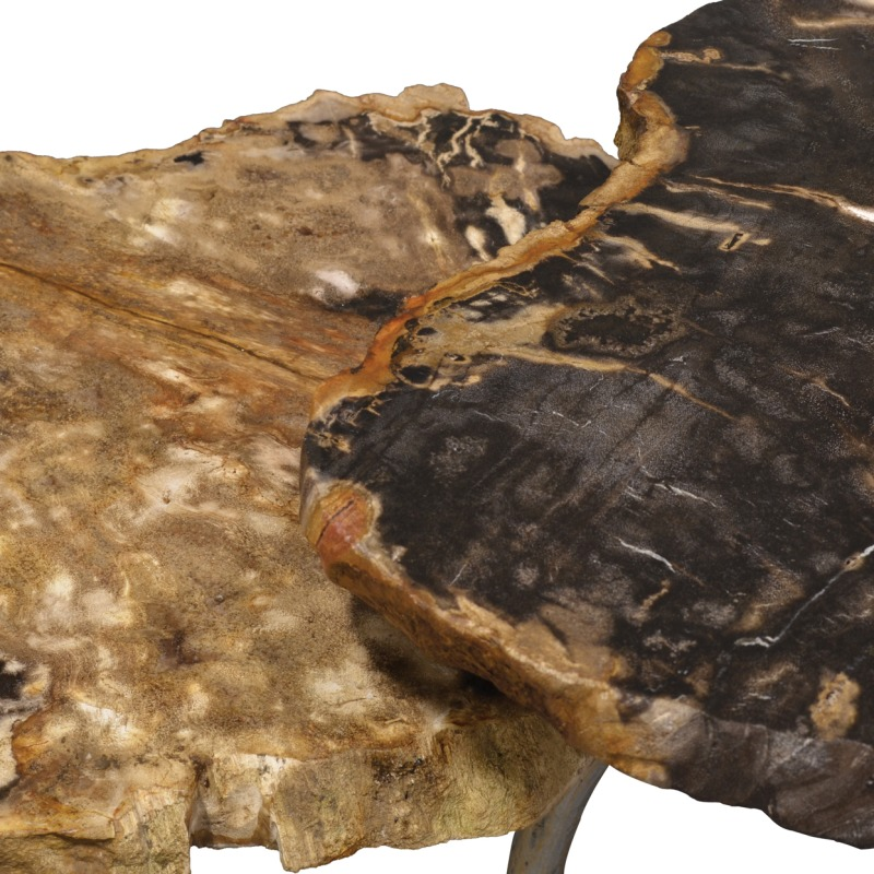 Cologne Petrified Wood Table, Set Of 2