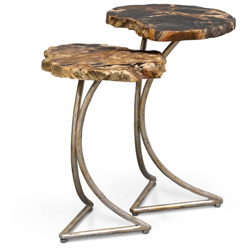 Cologne Petrified Wood Table, Set Of 2