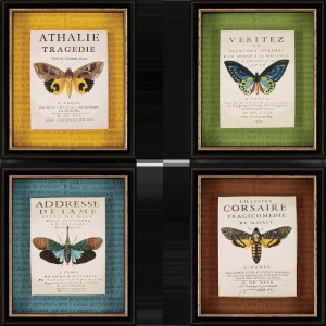 Botanical Butterfly Pk/4 Exclusive Gicle