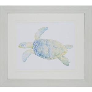Sea Turtle II Gicle