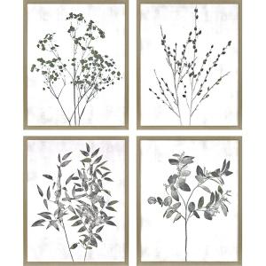 Floral Wild S/4