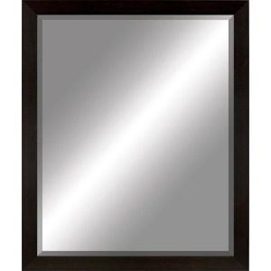 #203 22 x 28 Beveled Beveled Mirror