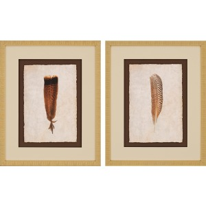 Feathers I Pk/2 Exclusive Gicle