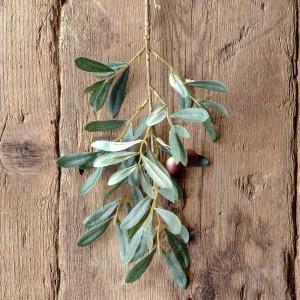 Spanish Olive Cutting