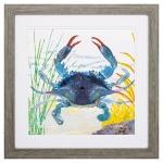 Sea Creature Crab