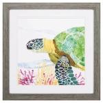 Sea Creature Turtle