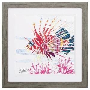 Sea Creature Fish