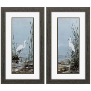 Island Egret S/2