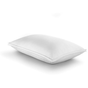 Down Complete Pillow