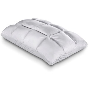 Body Chemistry SoftCell Reversible Hybrid Pillow
