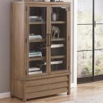 Cabinet Bookcase
