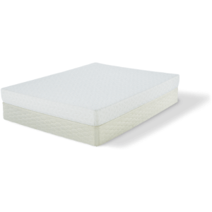 Fallwood Plush Mattress & Foundation
