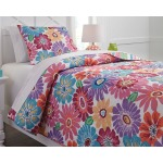 Alexei 2-Piece Twin Quilt Set