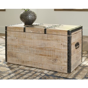 DARTLAND WHITEWASH STORAGE TRUNK