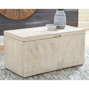 Ryker Storage Trunk