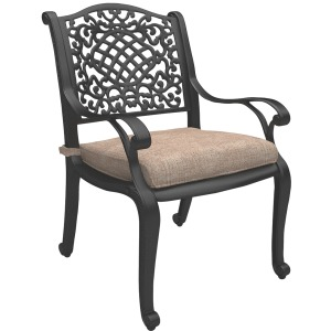 Rose View Chair with Cushion (Set of 2)