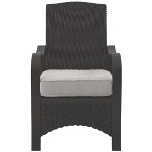 Marsh Creek Chair with Cushion (Set of 2)