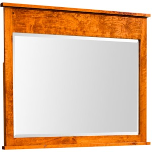 Shenandoah Mule Chest Mirror
