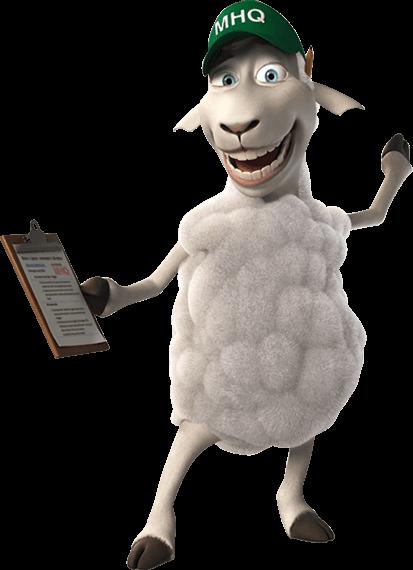 Mattress Headquarters Sheep