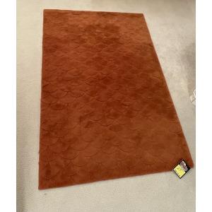 Area Rug 5x7 Orange w/ Fish Scale Pattern