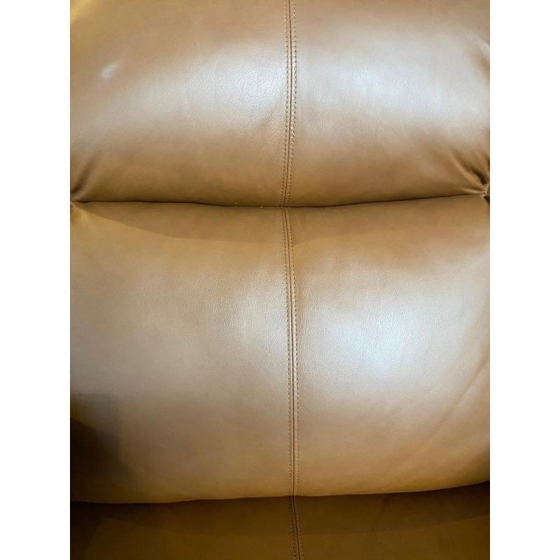 Shasta Power Reclining Sofa