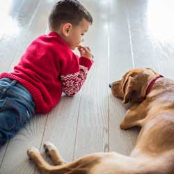 Boy and dog laying on floor