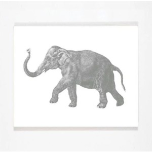 Smiling Hill - Elephant Wall Art