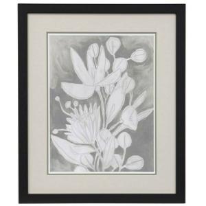 Spectral Blooms I Framed Print Under Glass