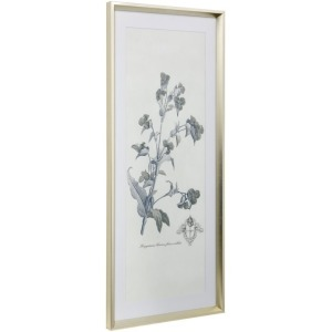 Soft Shoot III Framed Print Under Glass with Matte