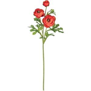 Ranunculus W/ Buds Stem