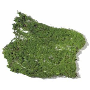 Moss Pad