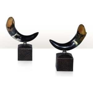 A pair of horn trophies Table Top Accessories