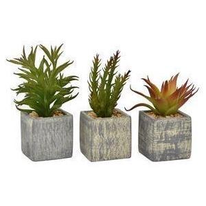 Faux Succulent Pot- 3 Assorted