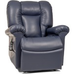 Stellar Eclipse Lift Recliner - Medium/Large