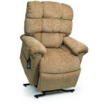 Cozy Comfort Power Lift Recliner - Medium