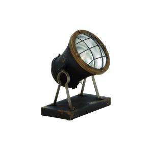 Metal LED Accent Spot Lamp