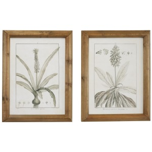 Floral Wall Art S/2