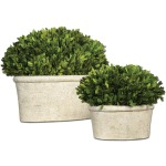 Preserved Boxwood, Oval Domes, S/2