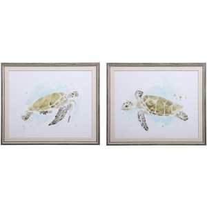 Sea Turtle Study Framed Prints, S/2