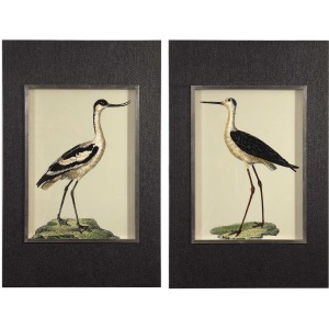 Birds On The Shore Framed Prints, S/2