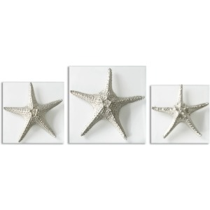 Silver Starfish S/3
