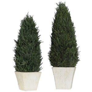 Cypress Cone Topiaries S/2
