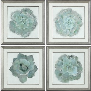 Natural Beauties Framed Prints S/4